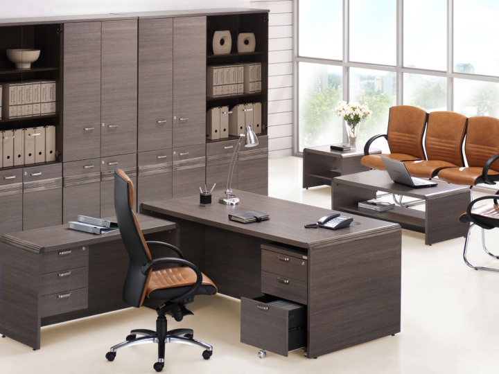 Unique office furniture for Executive Office